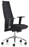 Plan Executive Chair